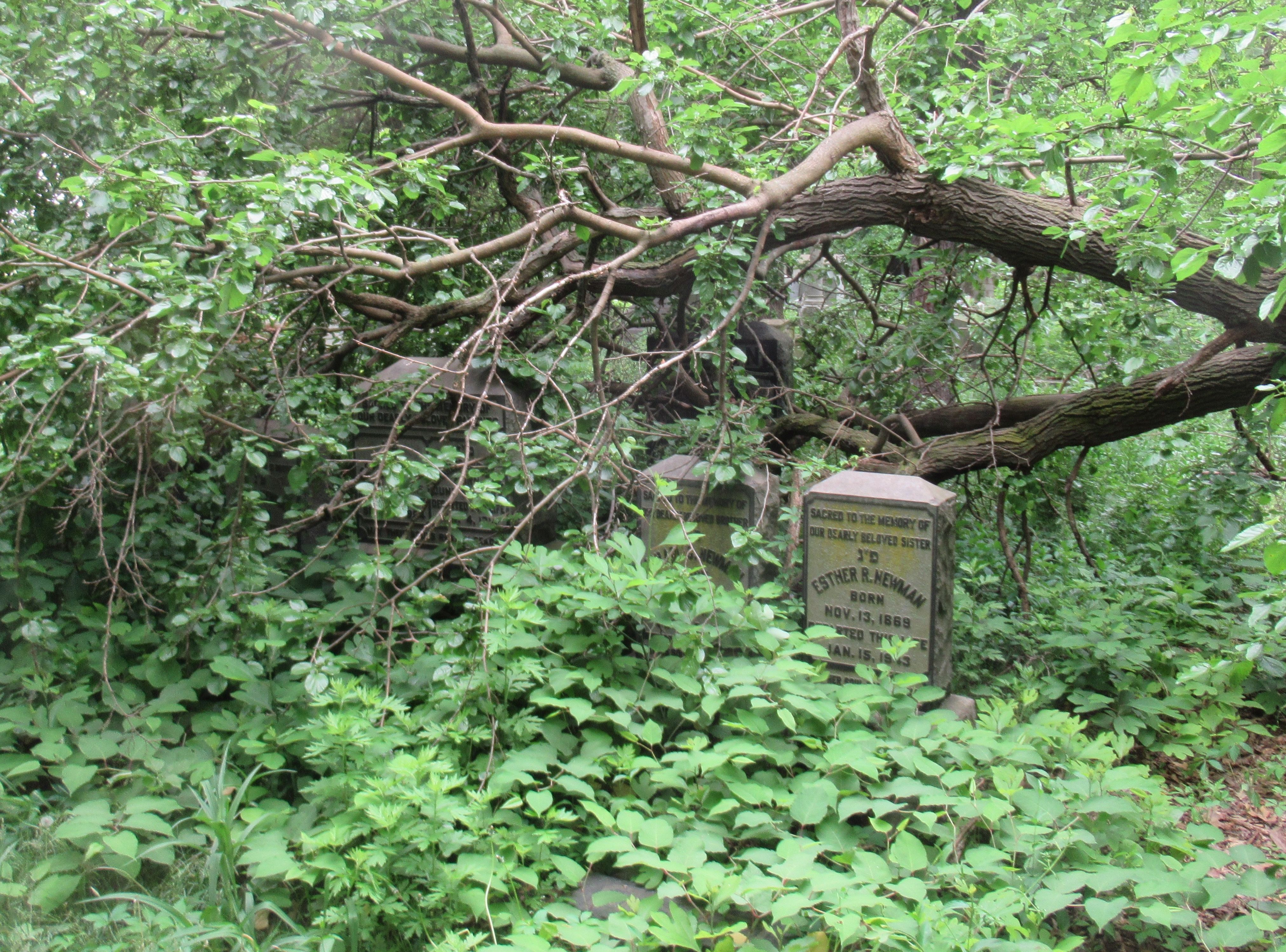 hellhole jewish cemetery gets lifeline from catholic the forward