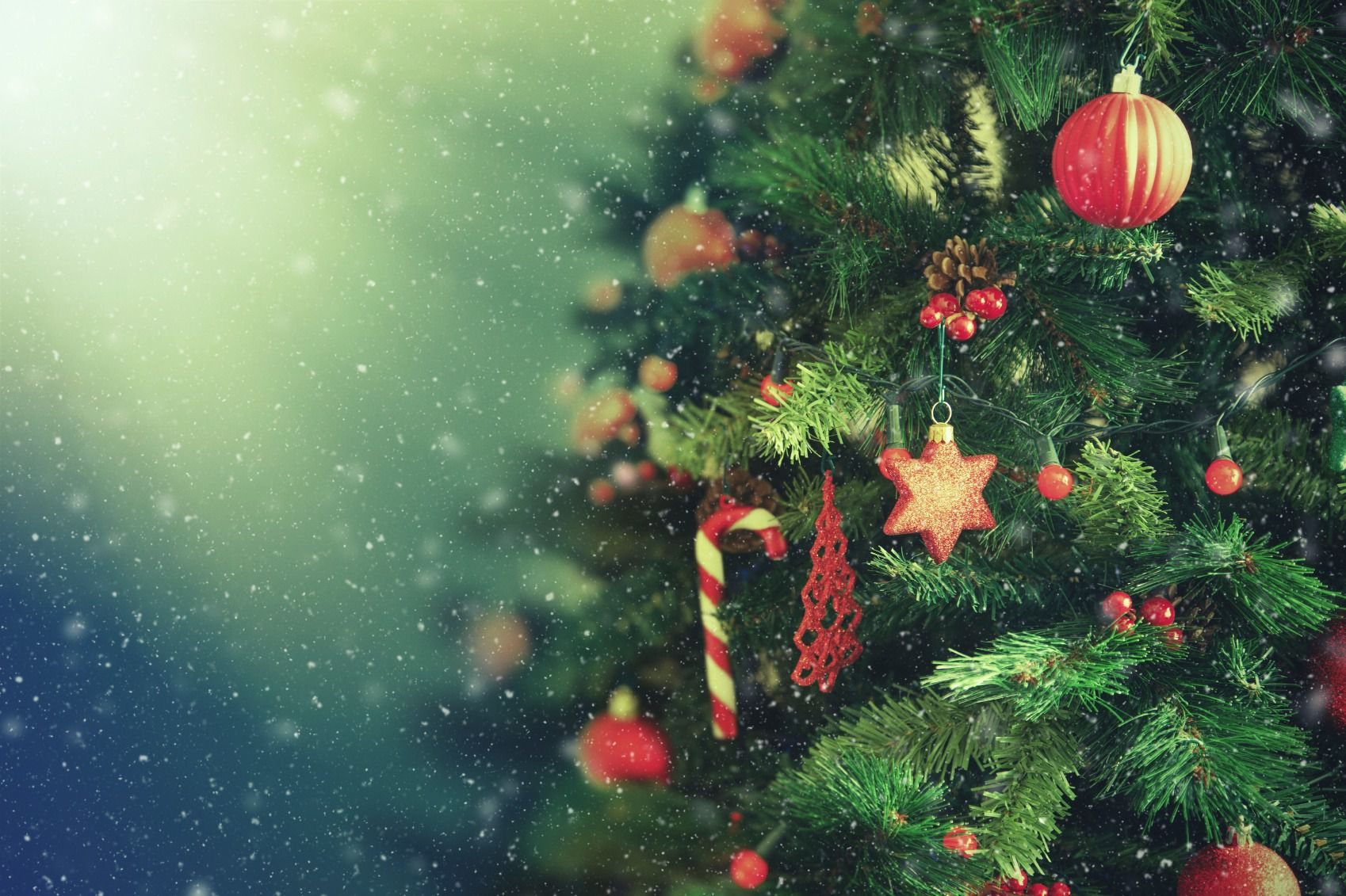 Why Russian Jews Love Their (Don\'t Call Them Christmas) Trees – The ...