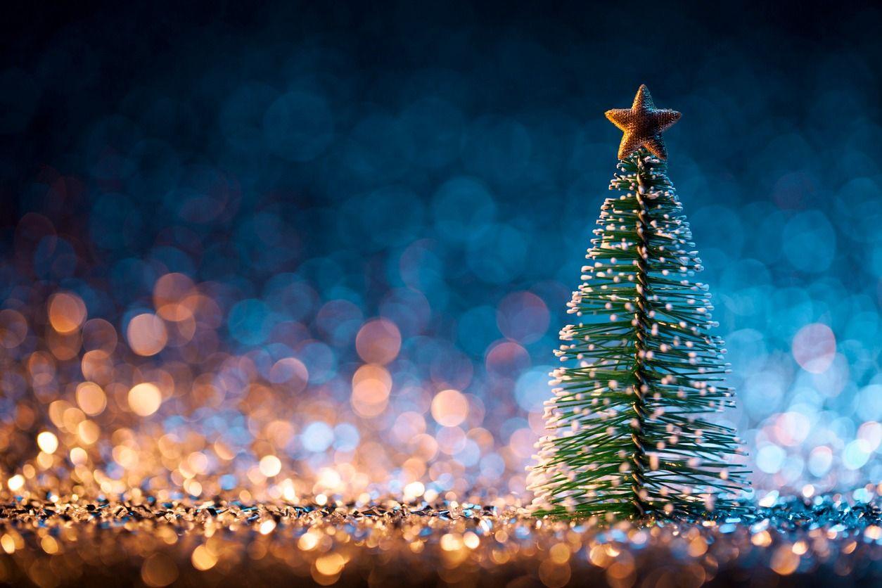 Do Jews Put Up Christmas Trees? – The Forward