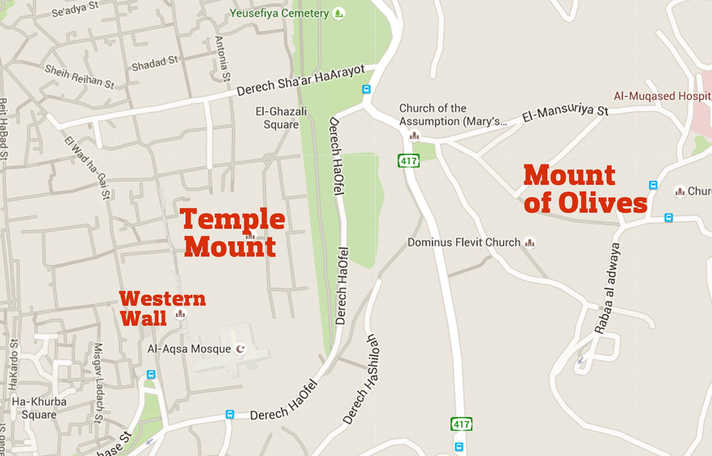 Temple Mount Revival Movement Revels in Crowd-Funded Passover ...