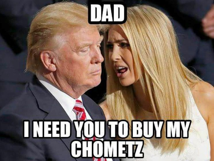 as the internet prepares for passover memes galore the forward