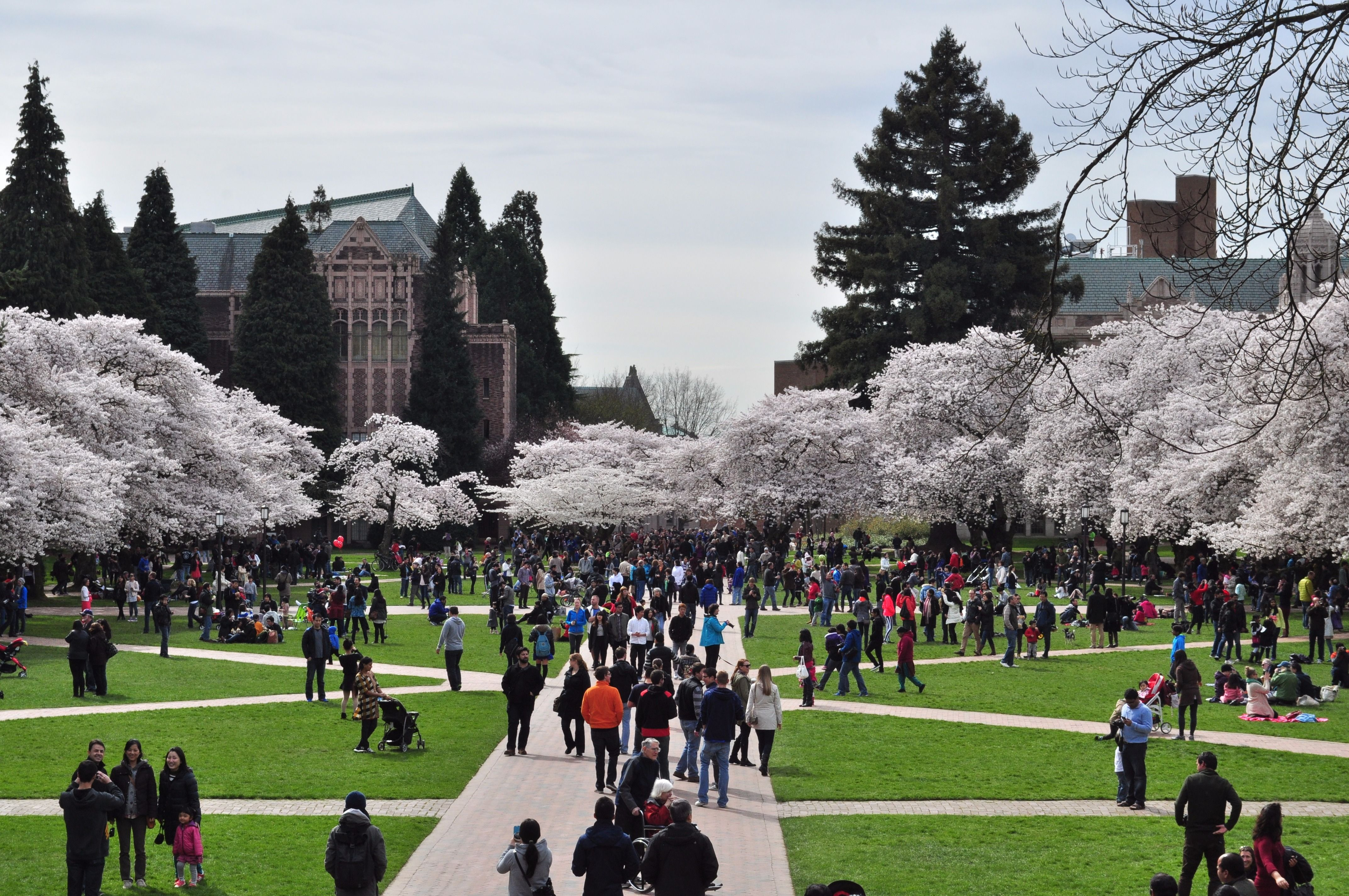 University Of Washington  >> University Of Washington Jewish College Guide The Forward